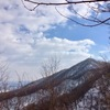 春を感じる藻岩山