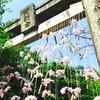 福岡の恋愛・縁結び最強パワースポット竈門神社(福岡県)の御朱印