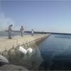 波切港でジギング