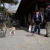 岡崎公園を散歩