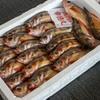 2020年4月27日 小浜漁港 お魚情報