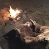 チャックワゴンと焚き火ステーキ