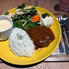 リナカフェ跡地のカフェでランチ【sofa akihabara】