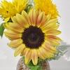 お花とくらす生活【季節を感じる〜夏〜】