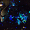 セントレアの「FLIGHT OF DREAMS」でチームラボの体験型コンテンツ・プロジェクションマッピングを堪能してきた