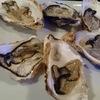 西千葉「イタリアンカフェ Chiaro(キアロ)」で牡蠣放題してきました