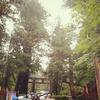 雨の中の日光東照宮