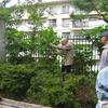 庭木の剪定教室(最終日)