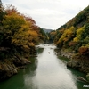 根尾川渓谷の紅葉