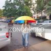 ジンバブエの雨季!ゾンゴロロ?ゾンゴロロ!