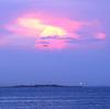 ◎「新コロ」禍中…の三浦半島へ /        ひと夏のおわりを見とどける(後編)