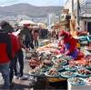 《釜山》チャガルチ市場でブリ刺しを