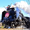謹賀新年 秩父鉄道 SLパレオエクスプレスを撮影してきました(下り便)