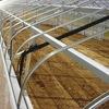北海道(雪口仕様)の農業用鉄骨ハウス仕様を東北でも応用しましょう!