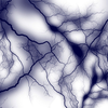 体調を整えるために・・・・   自律神経の機能とは