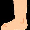 【歩行分析】足部からの運動連鎖について。重要な距骨下関節の動きまとめ。