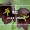 哀歌(旧約聖書口語訳)
