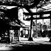 江ノ電 権五郎神社(御霊神社)