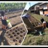 甥っ子の運動会と畑仕事