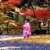 Kimono Flea Market ICHIROYA's News Letter No.670
