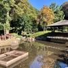 芹沢公園の池(神奈川県座間)