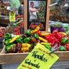 スーパーマーケット「ランドマークト」への道程  2