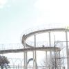 伊豆ぐらんぱる公園のグランイルミとシャボテン公園のカピバラに癒された年末の旅