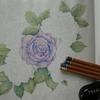 2】色鉛筆での『薔薇の葉っぱの塗り方』を書いてみました☆花日和花だよりより