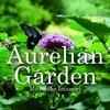 オーレリアンの庭