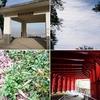 生駒山麓 森林浴と古代妄想ウォーキング(枚岡神社~神津獄(出雲井町)~らくらく登山道)