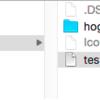 Iconというファイルについて