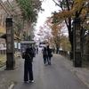 比叡山延暦寺・東塔地域(世界遺産)