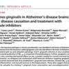 歯周病原性菌P.g菌がアルツハイマー型認知症の真犯人?進む創薬開発。P.g菌の特徴と検査方法と排除する方法。