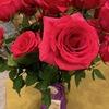 """バラがアメリカの国花になった経緯 ここにバラをアメリカ合衆国のthe National Floral Emblemと宣言します. ロナルド・レーガン1986年10月7日,この決定にはあまり不満はありませんでした.""""バラは単純に存在する,それはその存在のすべての瞬間に完璧である"""" バラの最大のライバルはマリーゴールドでしたが,バラはマリーゴールドよりもはるかに美しく,香りが良い.バラが勝ったのです.ロナルドレーガンローズ,ナンシーレーガンローズがつくられました.flowerpowerdaily.com"""