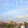 いわし雲の綾羅木川