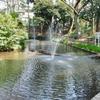 おとめ山公園の池群(東京都新宿)