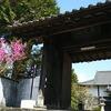 教会周りの歴史遺産を歩く 人吉・大信寺