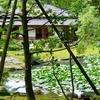 長谷池(石川県金沢)