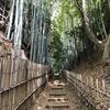佐倉城近くのひよどり坂などを廻ってきました!【城の周辺さんぽ編】/日本100名城(千葉県佐倉市)