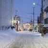 小樽雪あかりの路と幸せなふじりんの夜