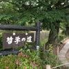 哲学の道へ(初夏)②観光7...過去20170601京都