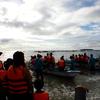 セブ島ジンベイザメ&ツマグロ滝&カワサン滝ツアーに行ってきた!【ツアーの内容】ドクターフィッシュ体験も