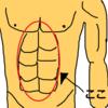 下腹部を鍛えるためにリバースクランチを取り入れました