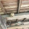 新城市で軒下にできた蜂の巣を駆除してきました