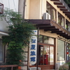 霊泉寺温泉 松屋旅館にひとり泊('09他)