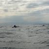 山本先輩の考えるサーフィン基礎の基礎とは。