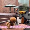 2021.6.27 【ご近所散歩⁉️】 Uno1ワンチャンネル宇野樹より