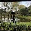 上海共青森林公園で鳥を撮ろう~上海での撮影会Part3