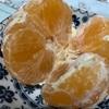 紅まどんなは不思議な柑橘類です。