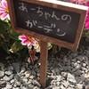DIYでお洒落な花壇を作ろう!お金を掛けない庭作り